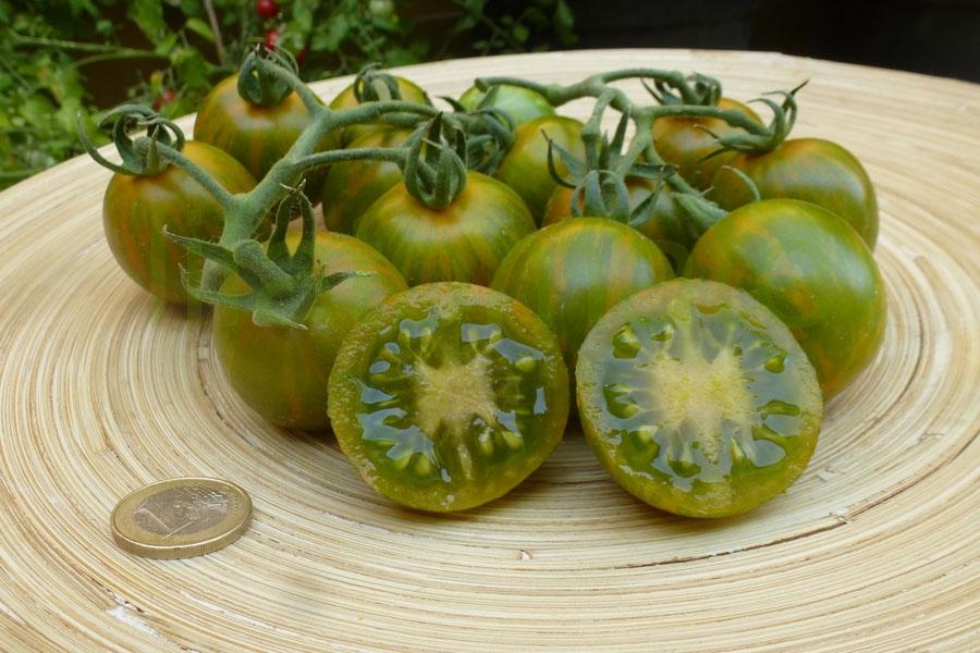 Tomate 'Grüne Zebra, Cherry'   ('Green Zebra, Cherry')