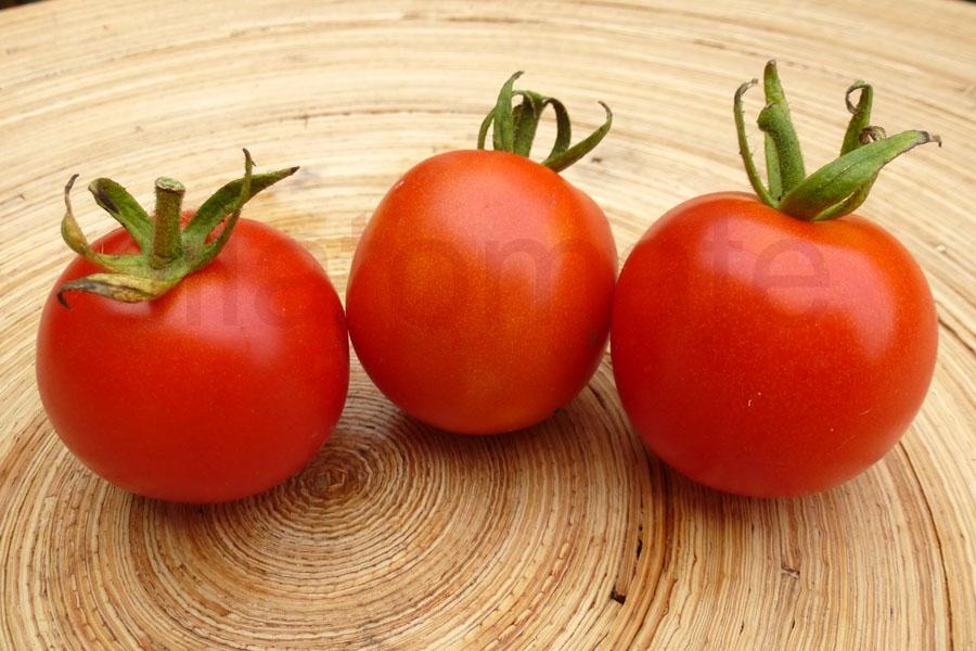 Tomate 'Deutsche Fleiß'