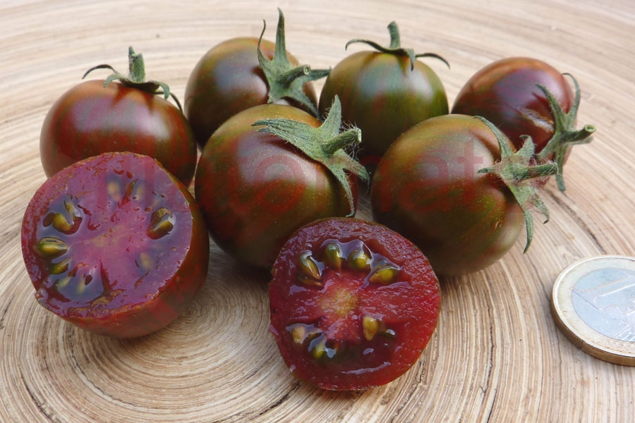 Tomate 'Black Zebra Cherry'