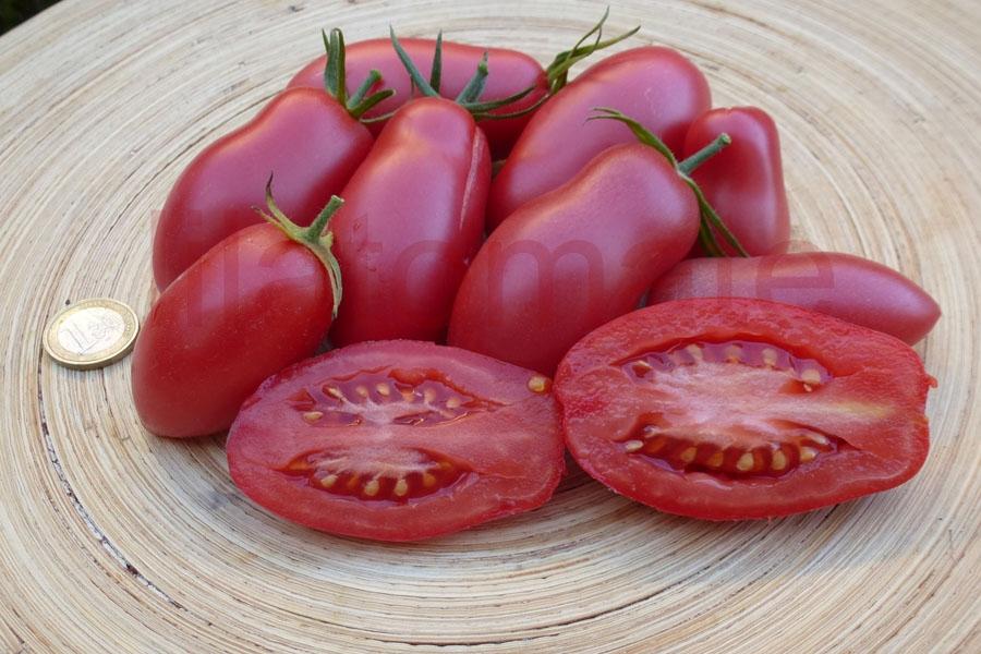 Tomate 'Kaukasische Liane' Saatgut