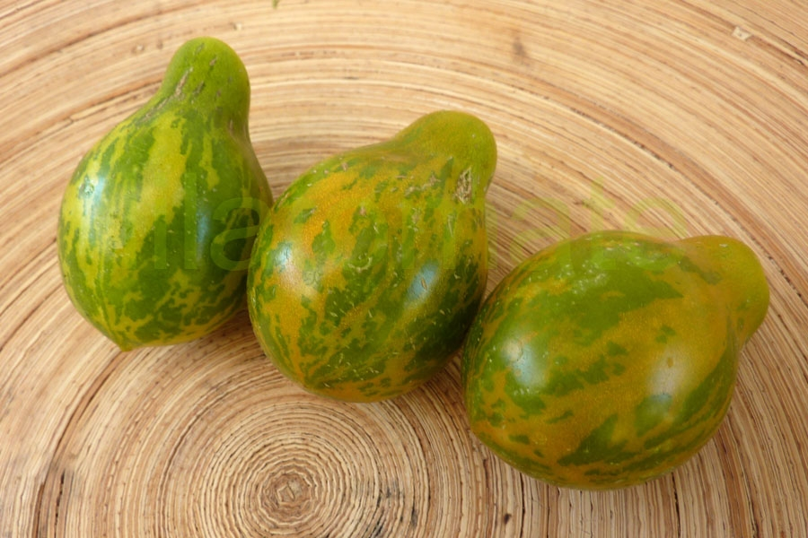 Tomate 'Grünes Birnchen' Saatgut