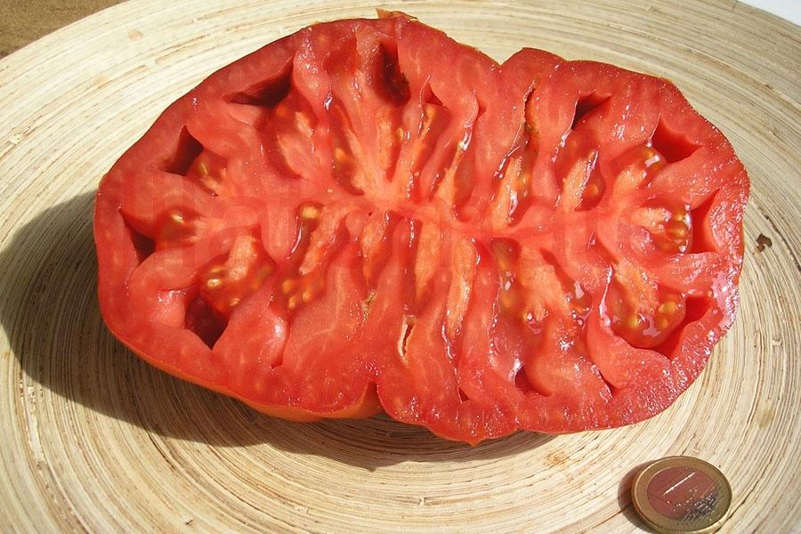 Tomate 'Russische Fleischtomate'