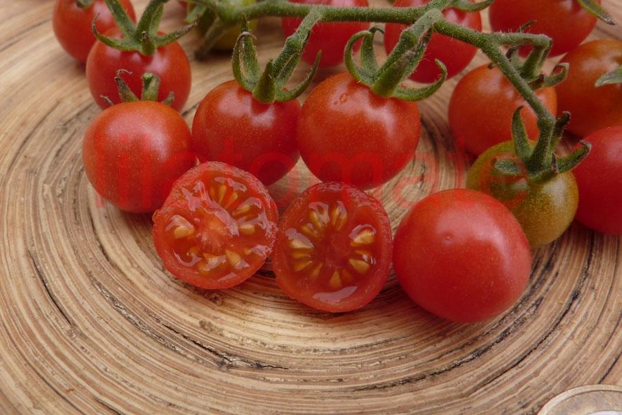 Tomate 'Wildtomate, rosa' Saatgut
