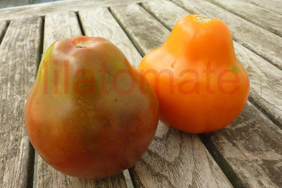 Tomate 'Schwarze Birne'