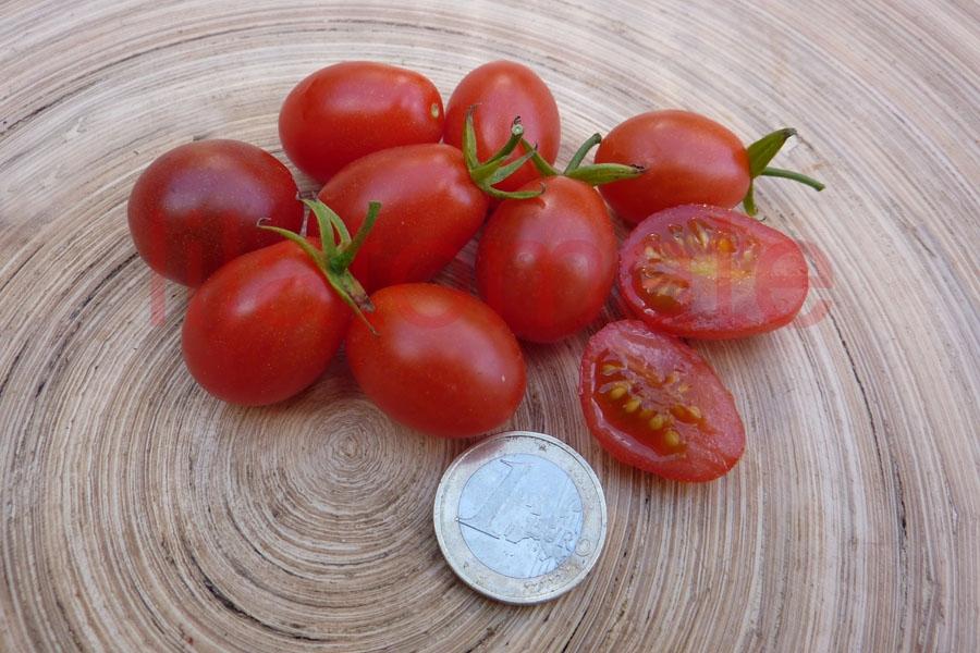 Tomate 'Small Egg' Saatgut