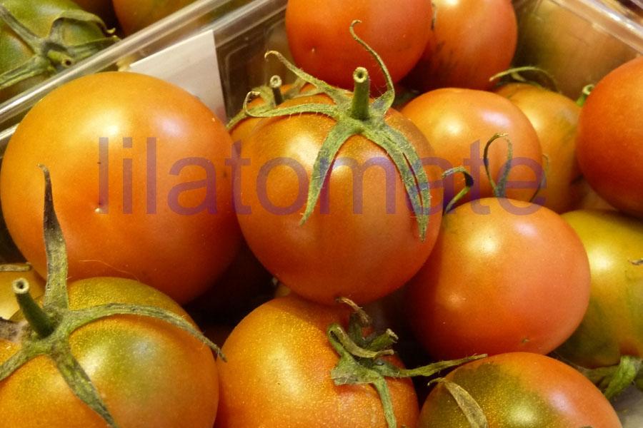 Tomate 'Winterkeeper' Saatgut