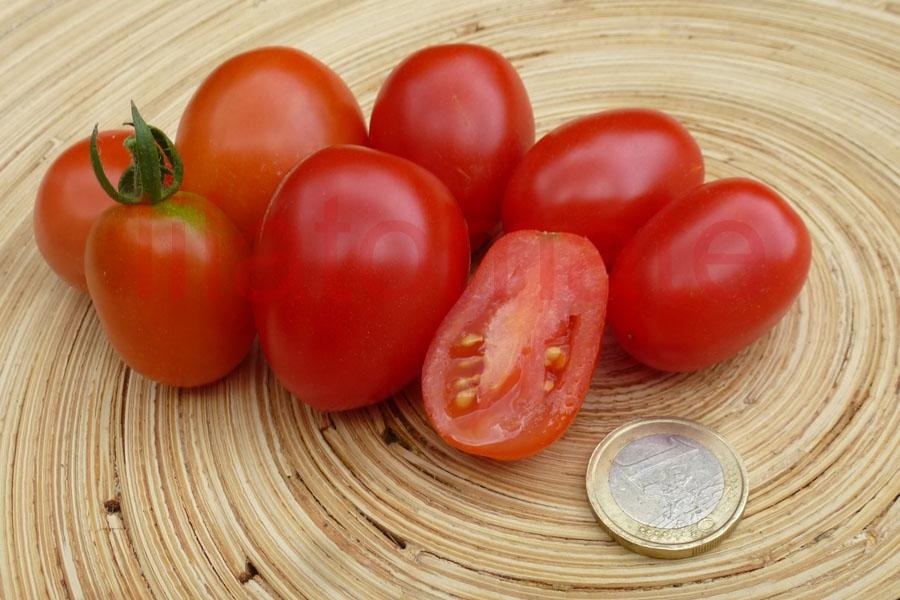 Tomate 'Zuckerpflaume' Saatgut