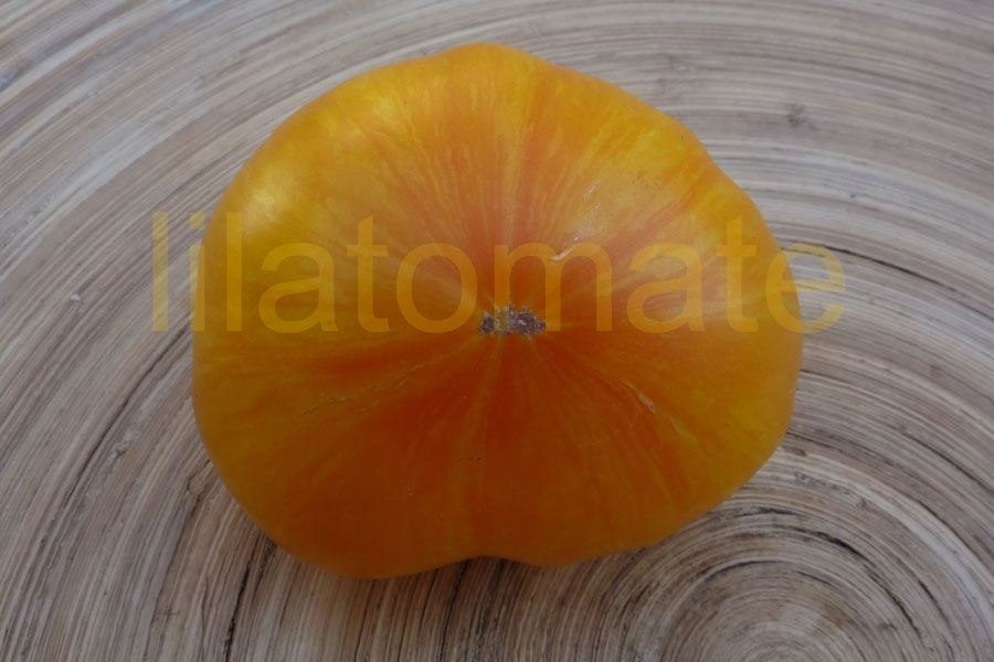 Tomate 'Big Yellow Zebra' Saatgut