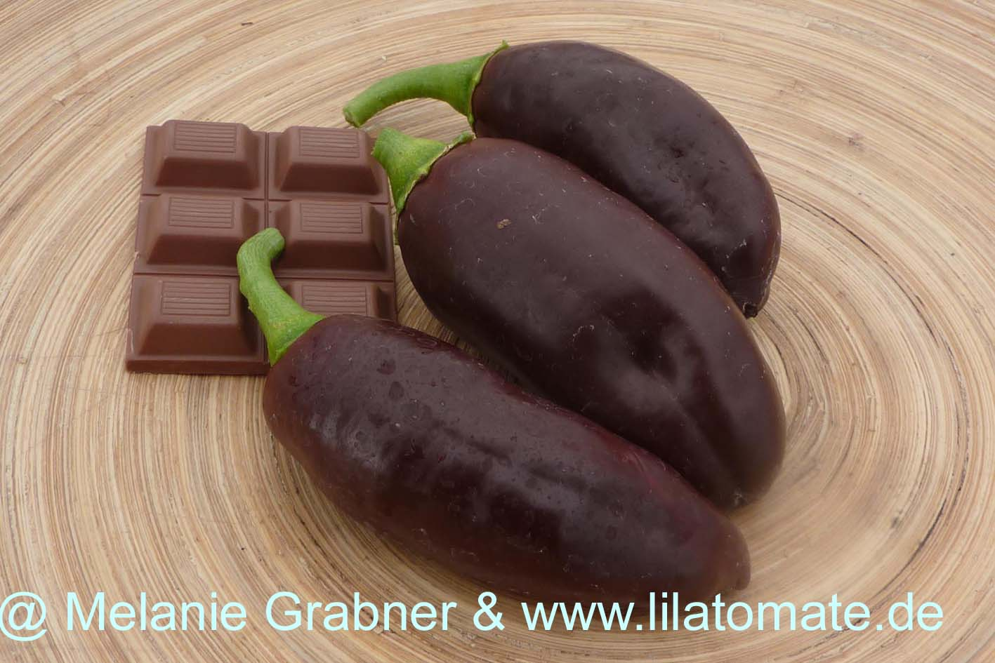 Paprika 'Sweet Chocolate' Saatgut