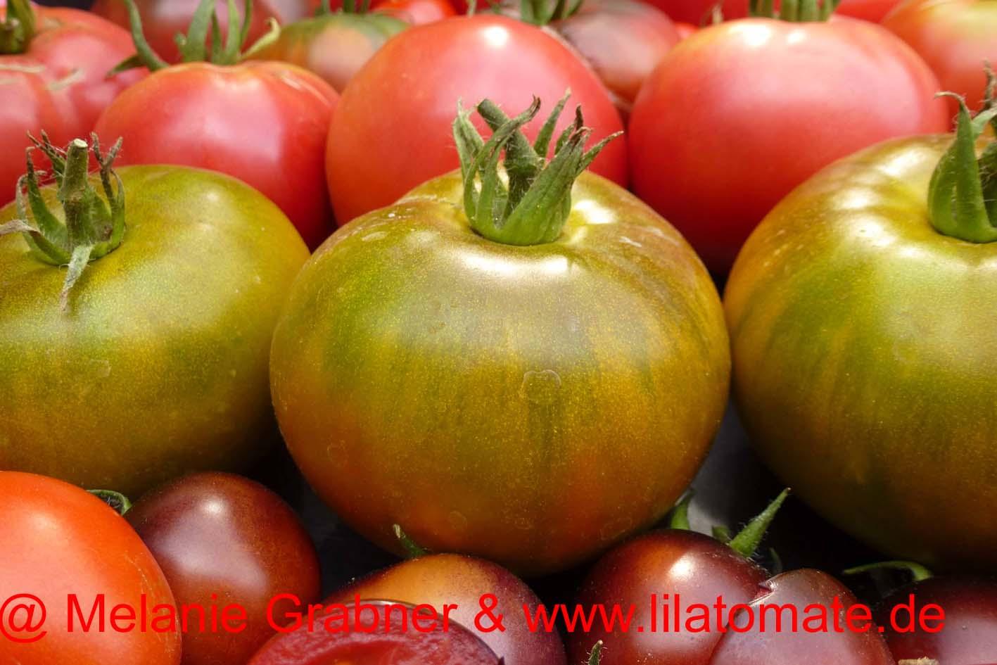 Tomate 'Grüne Ananas'