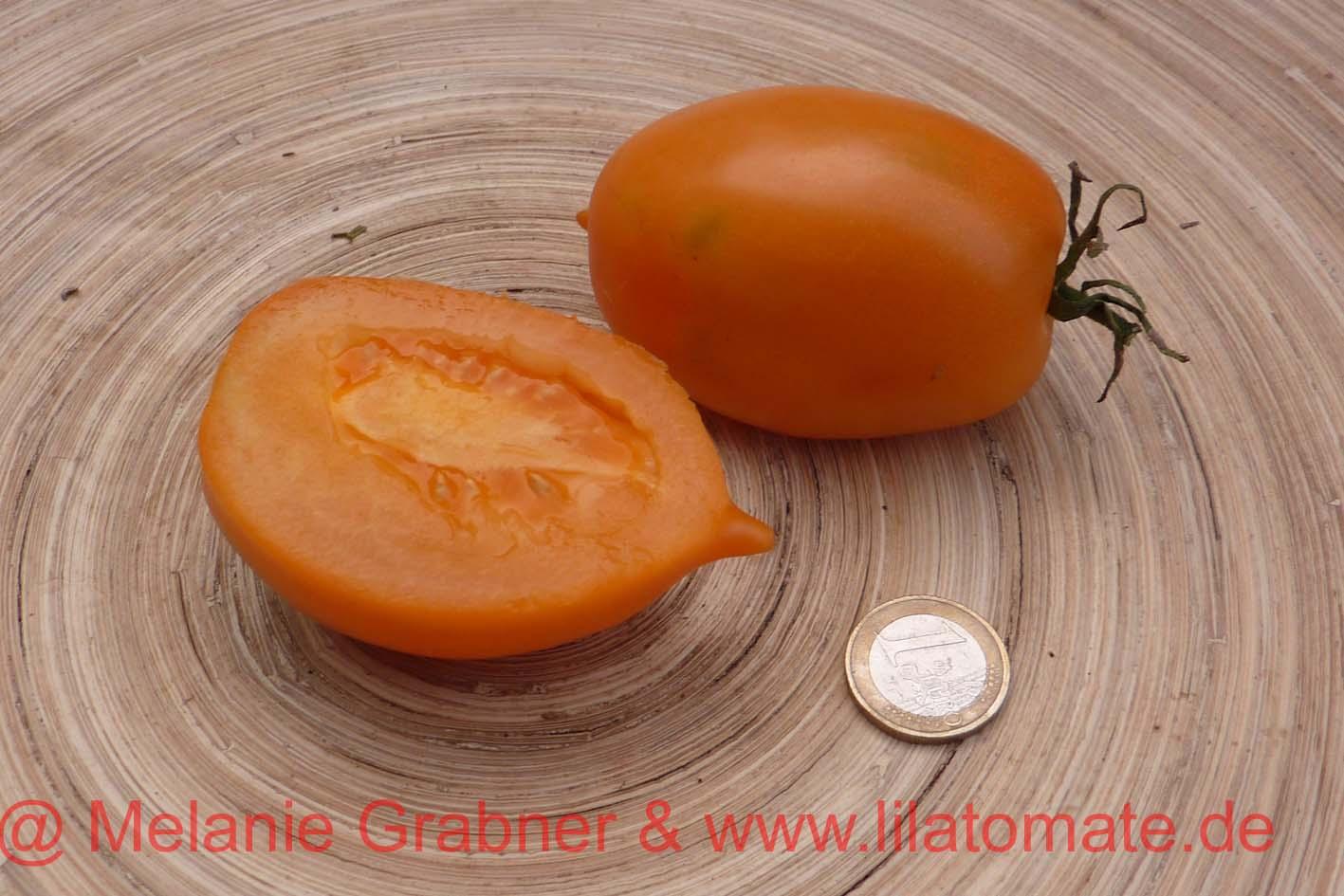 Tomate 'Fonarik' Saatgut
