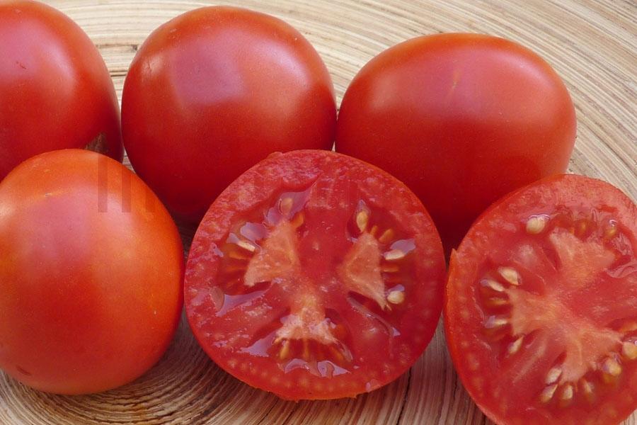 Tomate 'Haubners Vollendung'
